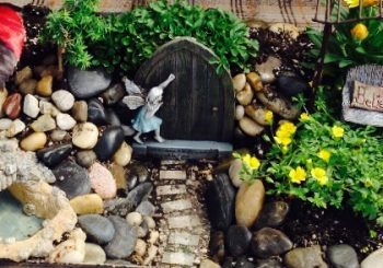 Fairy Gardens to Inspire You